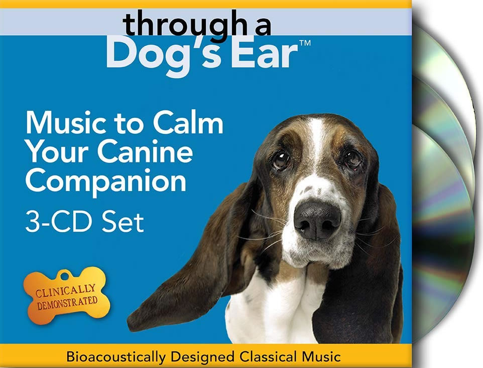 music-to-calm-dog