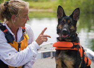 enforcing dog commands